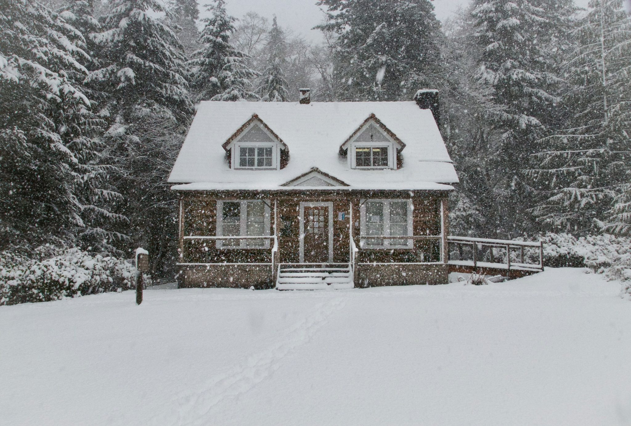 Snowy-Winter-Home-Free-From-Ticks